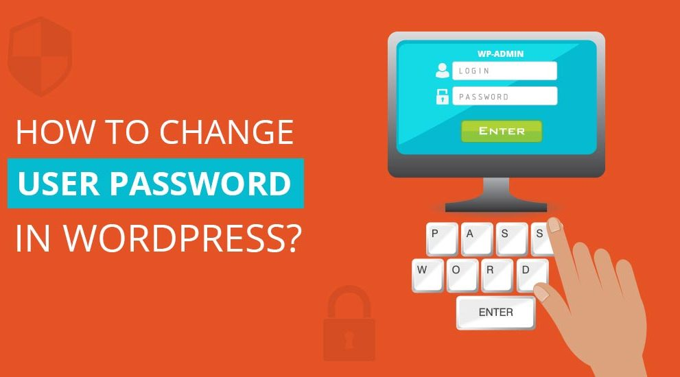 How to change WordPress password through cPanel and phpMyAdmin